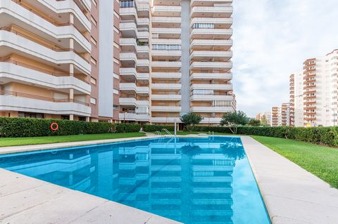 This simple and practical apartment with communal pool and views to the Playa de Gandía, accommodates up to 5-6 guests. The outside area of this complex have a community chlorine pool of 16 x 7.5 m and a depth of 1 to 1.50 m, a children's pool of 4 x...