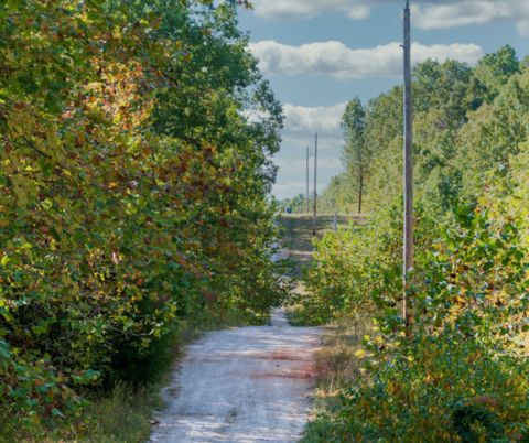 Located in Niangua. 5Ac residential land for sale in Niangua, Webster County, Missouri. This is such a beautiful plot to build your rural paradise. Stunning scenery and beautiful views. If you are looking for a superb getaway property near lakes, sta...