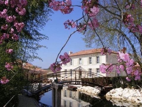 Lovely gite/bed and breakfast business in the Cognac region. Professionally renovated Mill, 30 minutes drive from Cognac! This up and running business Includes two gites, five chambres(table)-d'hotes (one wheelchair friendly). South-facing open-barn-...