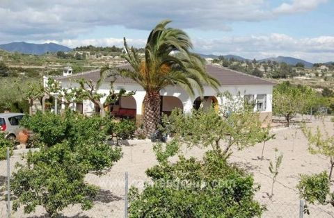 A Traditional Country Property in a really private location just off a country lane, yet minutes from Albaida Town with Mainline Station to Valencia and lots of facilities. This well maintained and presented property is walled and gated for privacy w...
