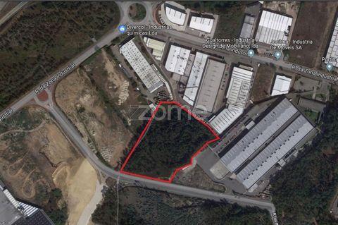 Terreno de 15.463,00 m2 conforme levantamento topográfico recentemente efetuado, ideal para construção de pavilhão industrial, com projeto a aguardar aprovação do Município. Excelente oportunidade de investimento em Paredes, a 750m da A42, 25 Kms do ...