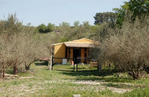 A wonderful Country Property full of character, from the idyllic setting just minutes from the centre of Albaida to the wonderful rustic beams used throughout the property.This private plot of land is almost completely flat and the house, garden and ...