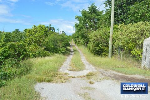 This large 1.2+ acre lot situated in Morning Star about 800 feet above sea level has spectacular views of the ocean and the enthralling Mount Nevis. Beautiful sunsets are clearly visible from this lot. There is a gentle slope to the land which would ...