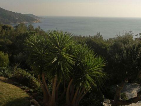 Location villa St tropez. Très belle villa dans un environnement exceptionnel avec de magnifiques vues sur la mer. située sur la commune de Ramatuelle au sud de la Quessine, cette maison bénéficie de tout le confort nécessaire. 2 suites avec salle de...