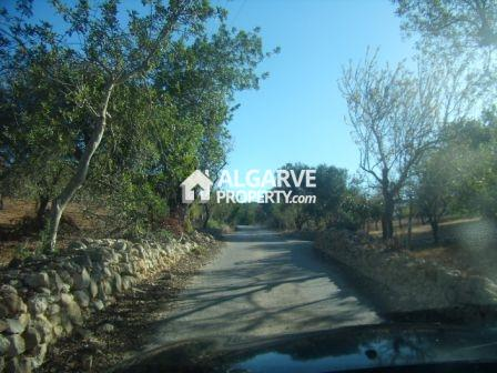 Located in Tunes. 8.320 sq.m. plot excellently located in a quiet area close to the city of Tunes. Just 15 minutes drive from Albufeira. Easy access to the A2. With an old house with 200 sq.m. of built area. Excellent sun exposure. Panoramic countrys...