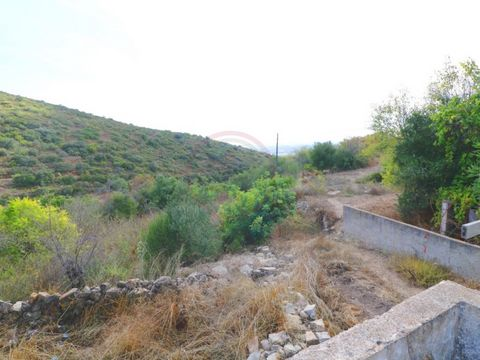 Land with sea view situated on a hillside near the mountain of San Miguel. With paved road and town's water. The ruin allows the construction of 250 sqm with swimming pool. Please that there is a ruin of the neighbor that is right next to the one we ...