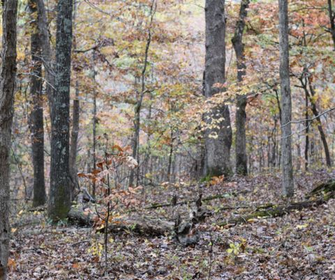 Located in Chadwick. 12.9Ac residential land for sale in Chadwick, Christian County, Missouri is now available. This is a nature lover's dream. Such a beautiful plot to build your cabin in the woods, your rural getaway or your first home. Stunning sc...